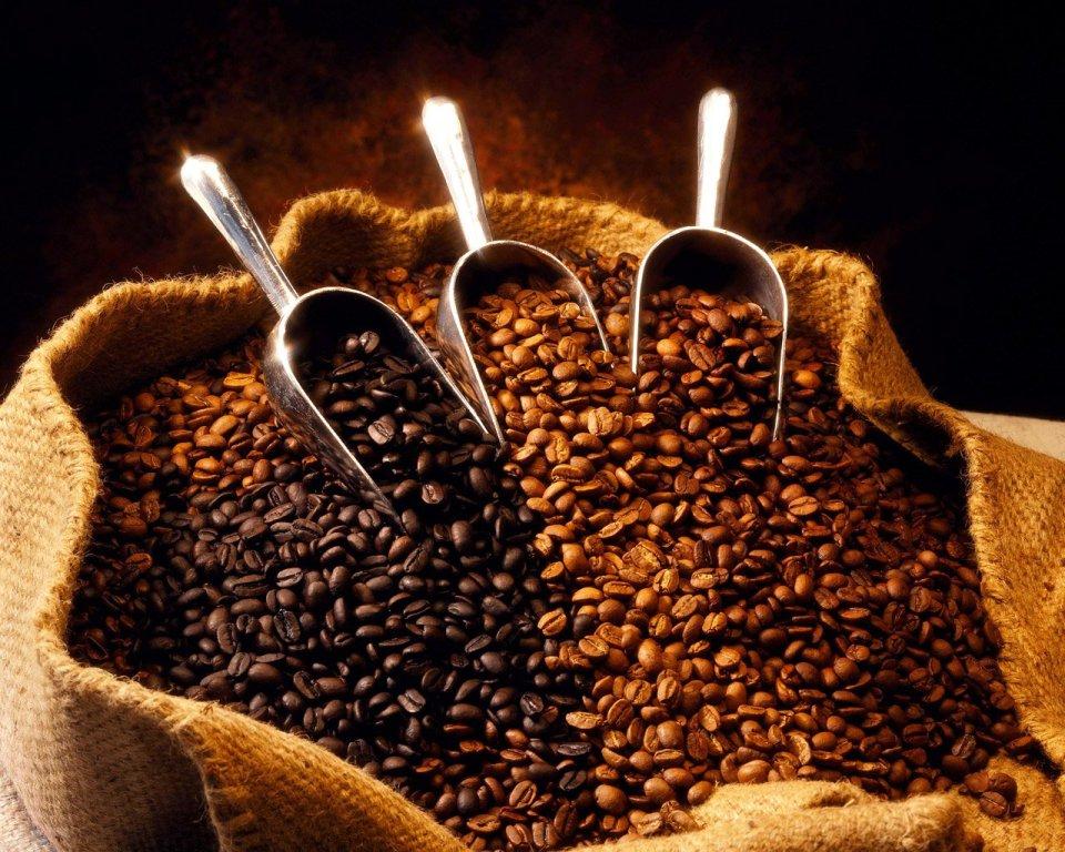Peru Approcassi Cajamarca Organic Coffee Beans Review